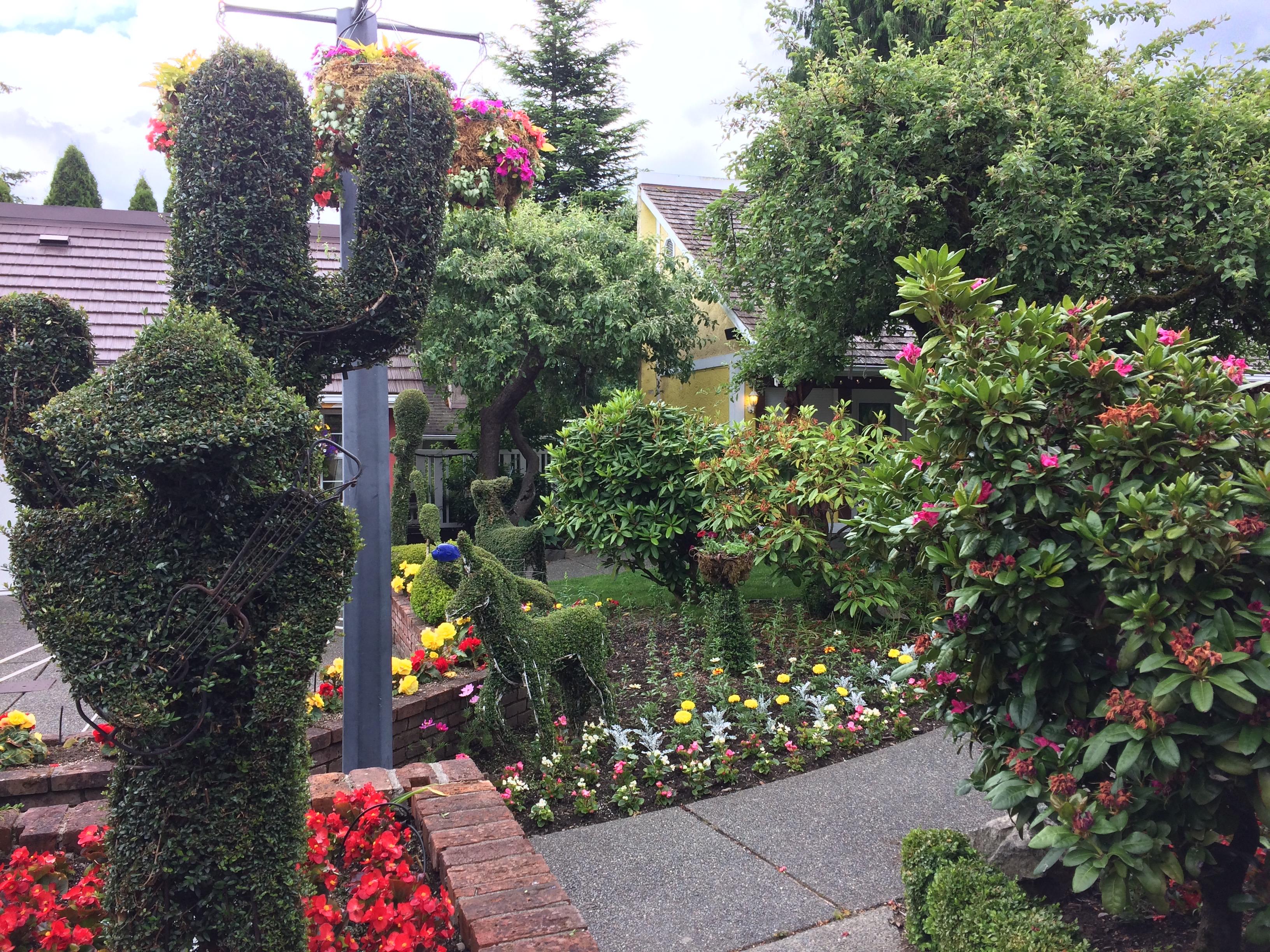 Chemainus garden