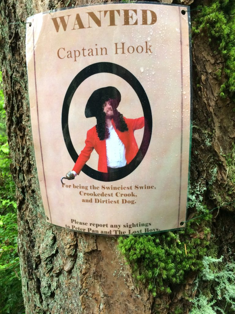 Wanted poster for Captain Hook