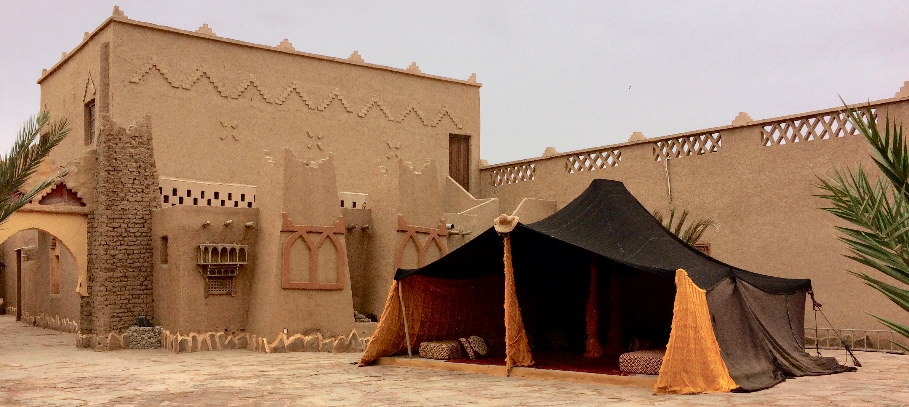 Relax before the camel ride