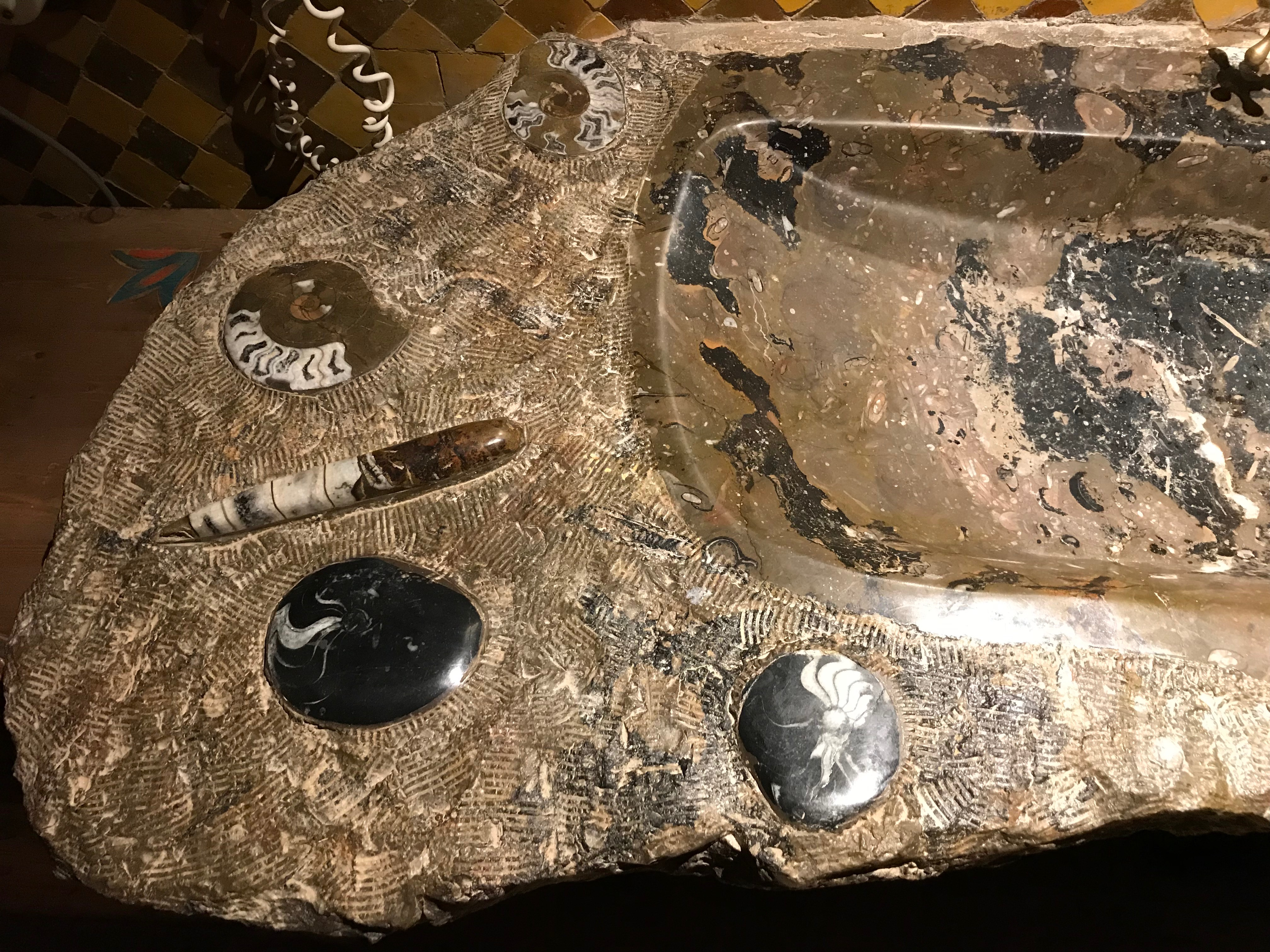 Sink top with fossils