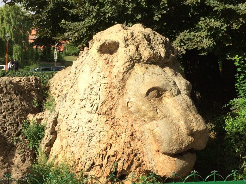 Last Lion of Ifrane