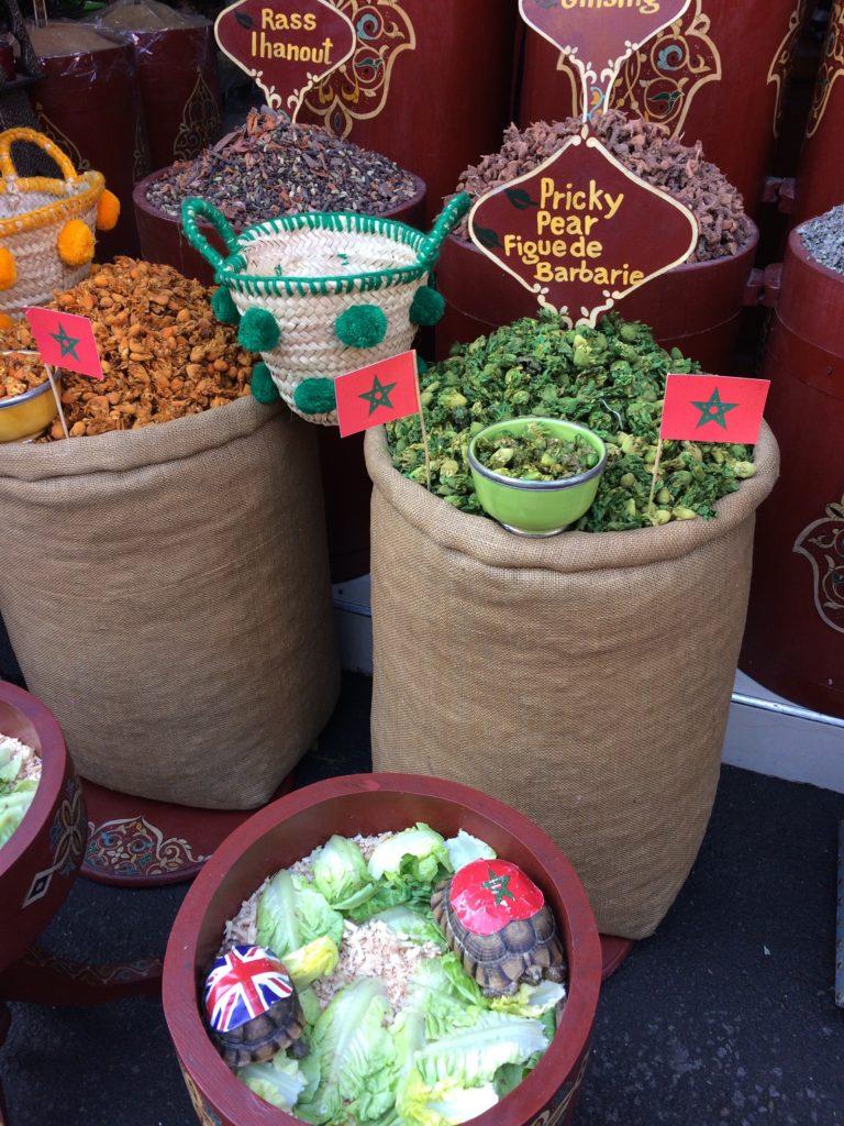 Turtles in Marrakesh souk