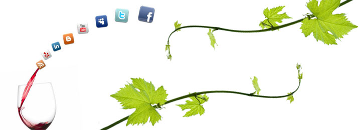 Solterra Strategies LLC - Winery Buyers Guide - Paso Robles 93446