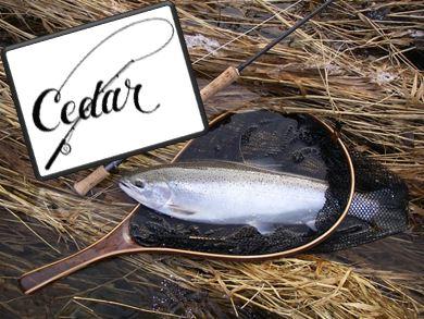 Cedar Landing Net Logo