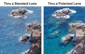 Polarized Eyewear