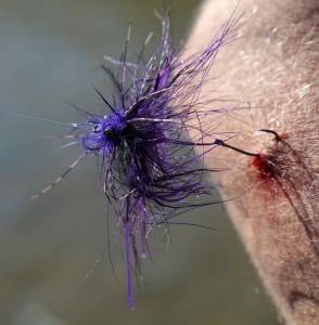 Spey Fly Hook in Arm BBBB