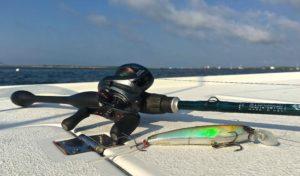 St Croix Legend Extreme Baitcast Rod Shimano Core Baitcaster Yo Zuri 3D Minnow Lure AAA