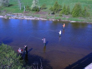 Fly Fishing Corporate Lesson on the Grand River B