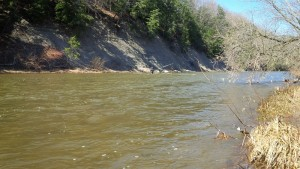 The Credit River in Erindale Park April 24th at 2pm