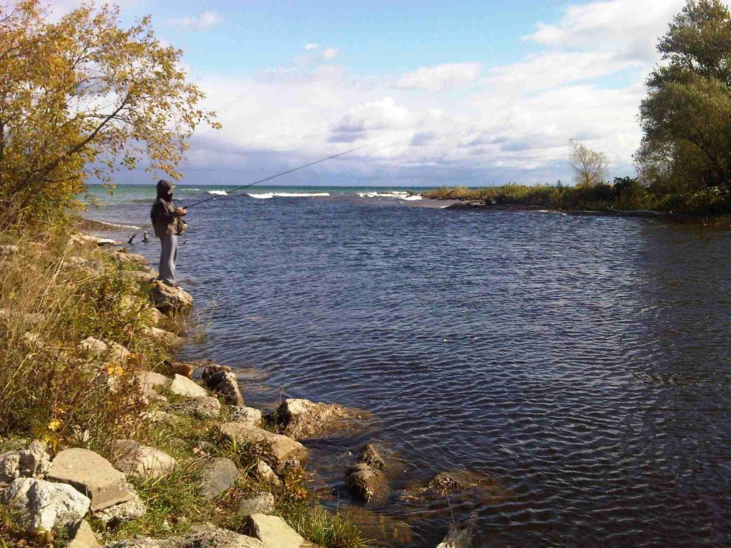 The Beaver River Thornbury River Mouth B