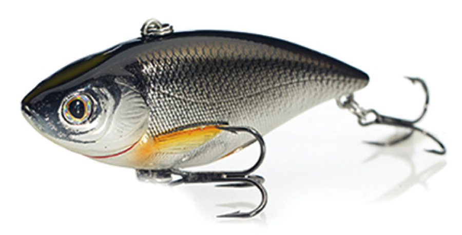 LIVETARGET Golden Shiner Rattlebait series