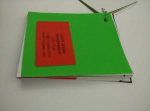 Light Green EVAVISION transparent EVA interlayer film for laminated safety glass (17)