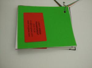Light Green EVAVISION transparent EVA interlayer film for laminated safety glass (20)
