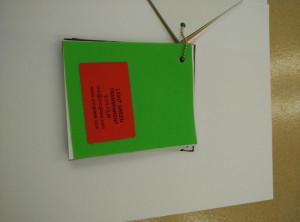 Light Green EVAVISION transparent EVA interlayer film for laminated safety glass (22)
