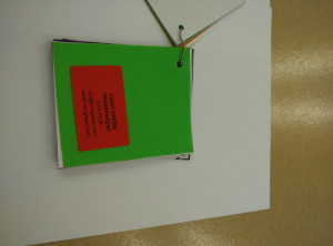 Light Green EVAVISION transparent EVA interlayer film for laminated safety glass (25)