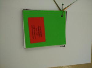 Light Green EVAVISION transparent EVA interlayer film for laminated safety glass (27)