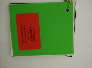 Light Green EVAVISION transparent EVA interlayer film for laminated safety glass (34)