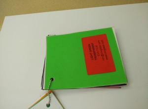 Light Green EVAVISION transparent EVA interlayer film for laminated safety glass (6)