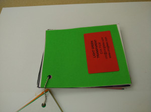 Light Green EVAVISION transparent EVA interlayer film for laminated safety glass (7)