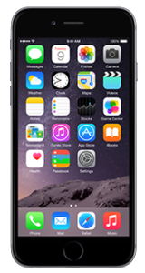 apple-iphone-6-plus-16gb-space-gray-450x350-e1433513765491[1]
