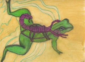 frog and scorpion