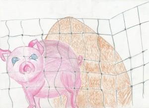 Jessi greedy pig 1 (2)