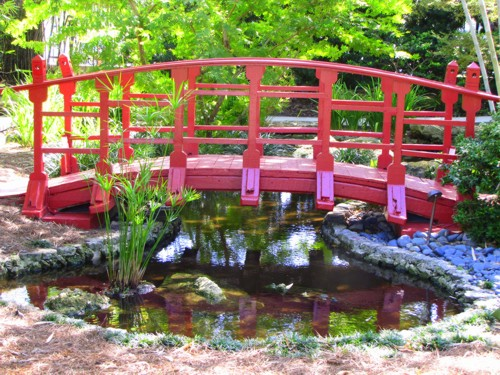 japanese-garden-bridge-at-miami-beach-botanical-garden