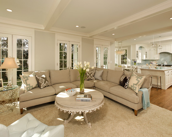 Transitional-Living-Room