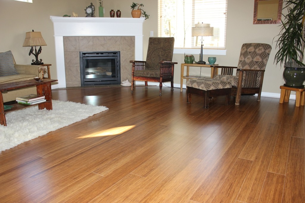 flooring-remodel-another-living-room-with-bamboo-house-bamboo-flooring