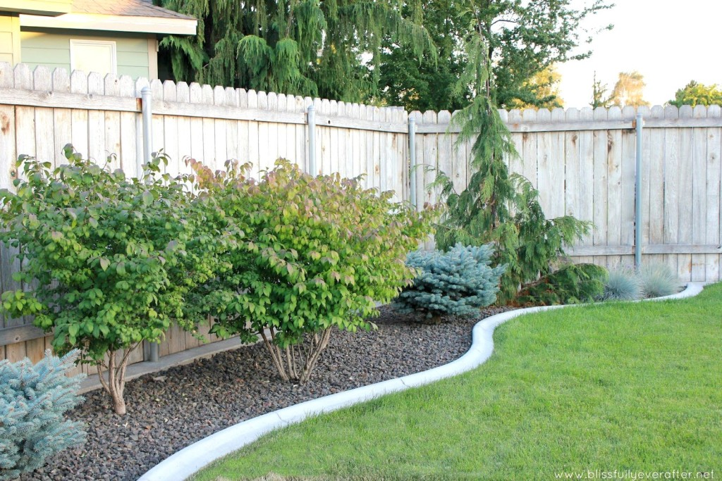 personable-landscape-ideas-for-small-backyards