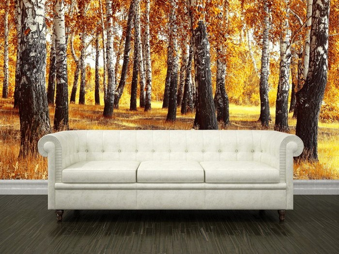 Birch-Forest-in-Fall-Wall-Mural-for-Living-Room-Ideas