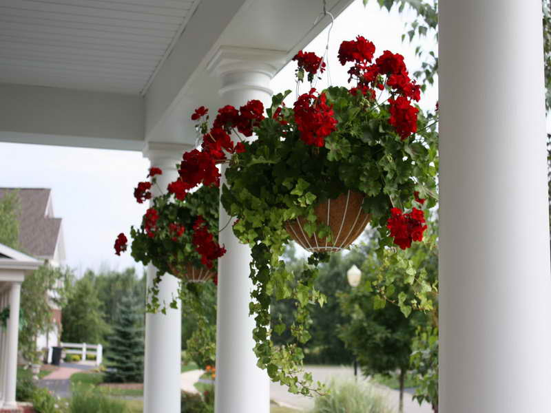 Lovely-Hanging-Basket-Ideas