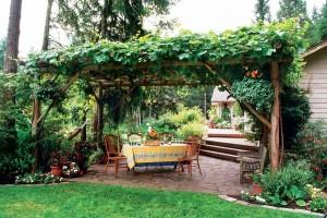 21 Best Patio Grape Arbor Decor Ideas