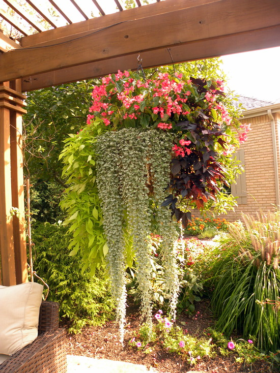 outdoor-hanging-plants-ideas-in-terrace-home