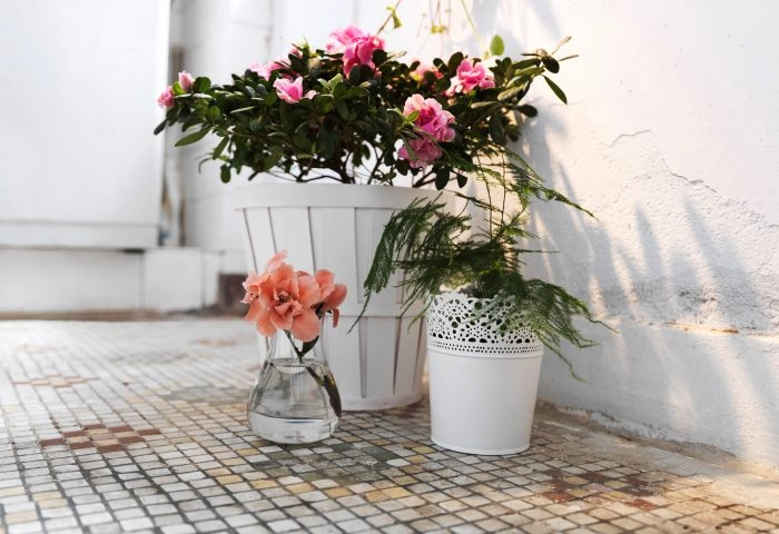 white-vintage-floral-arrangement-and-pot-plants