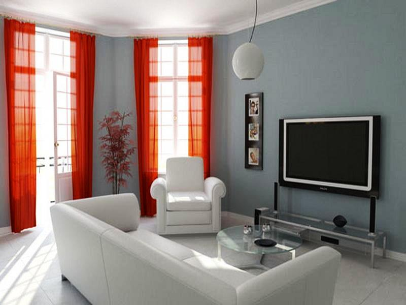 Great-Accent-Walls-Ideas-for-Living-Room