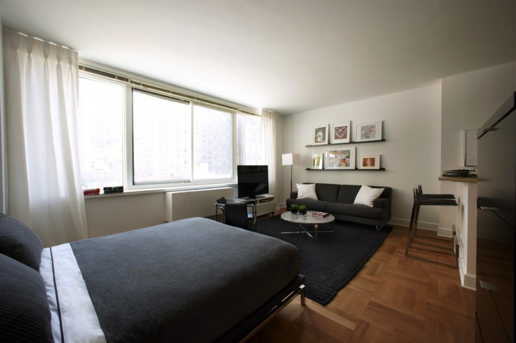 Single-small-apartment-ideas-space-saving-with-graceful-black-bed-and-rug-plus-wall-charming-painting