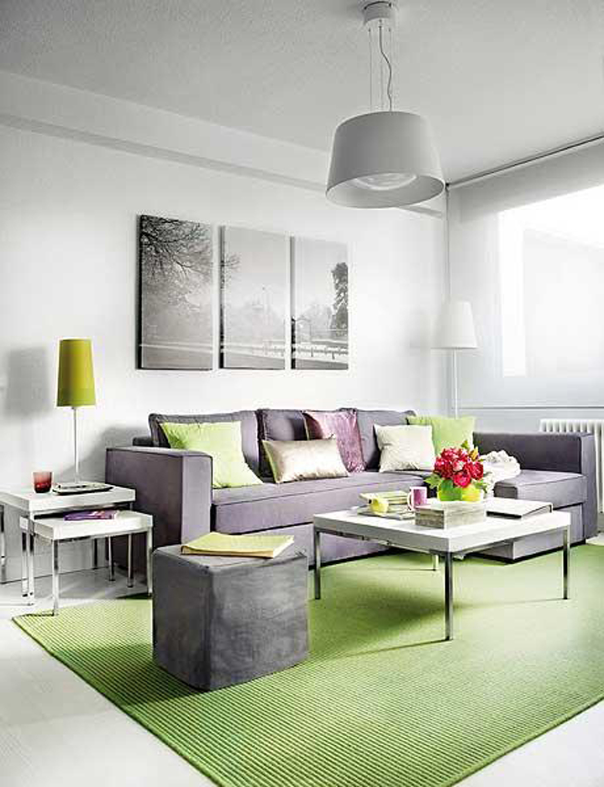 decorating-ideas-for-small-living-and-dining-room-combo
