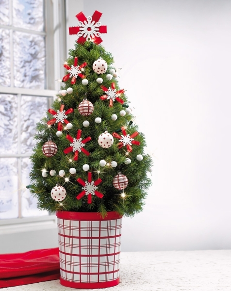 Small Christmas Tree In Red And White Pot
