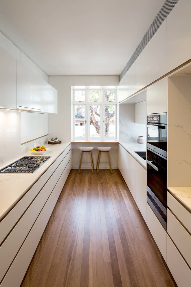 Contemporary Trendy Galley Kitchen