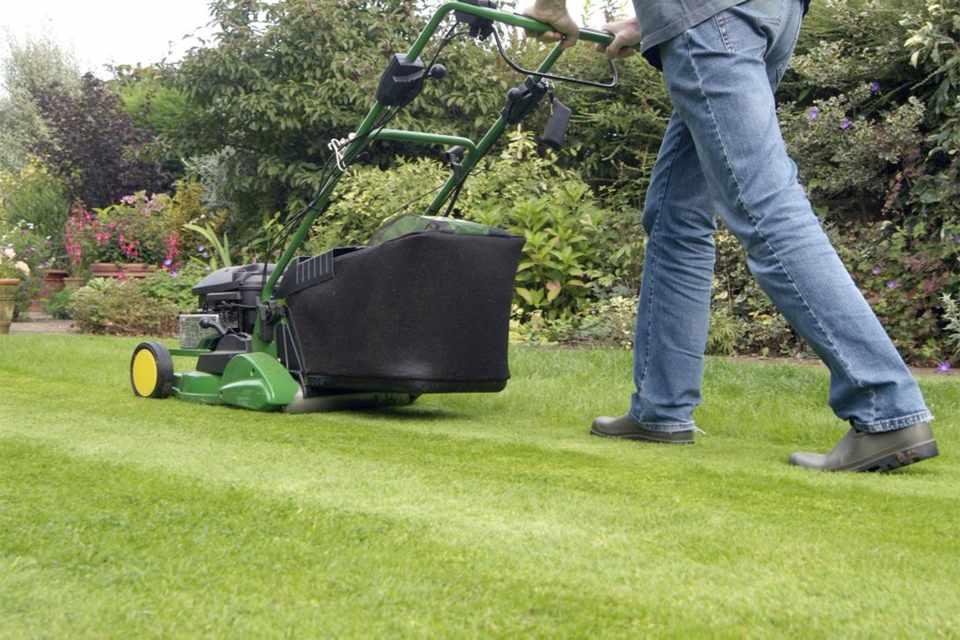 Caring for The Lawn
