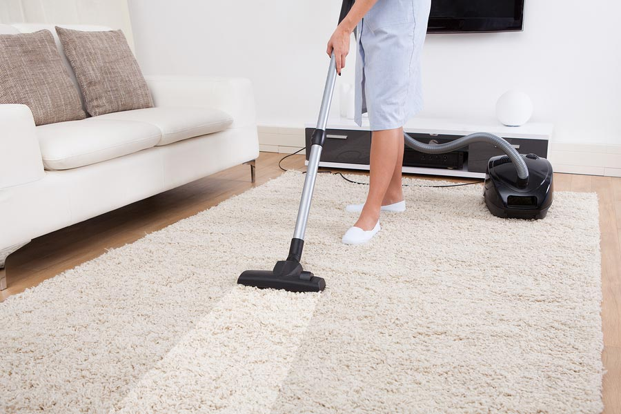 Have all the carpets, rugs, drapes, and furniture steam cleaned