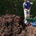 Best Soil Removal Tools and Tips