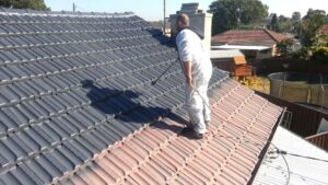 10 Reasons Why you Need to Paint Your Roof