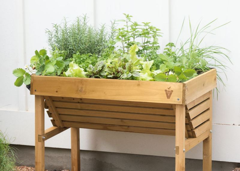 Herbs Arе Easy Tо Grow