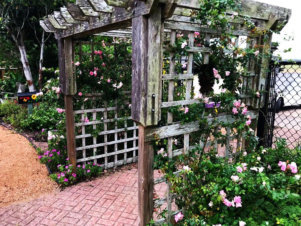 Add a Trellis to the Space
