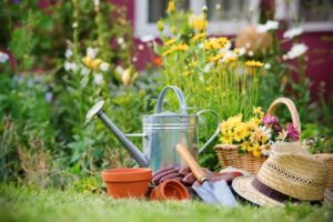 5 Environmentally-Friendly Gardening Tools for Your Garden