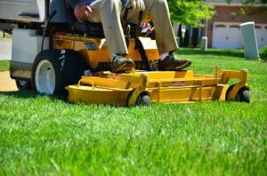 Launching a Lawn Care Business – How to Become a Lawn Care Professional