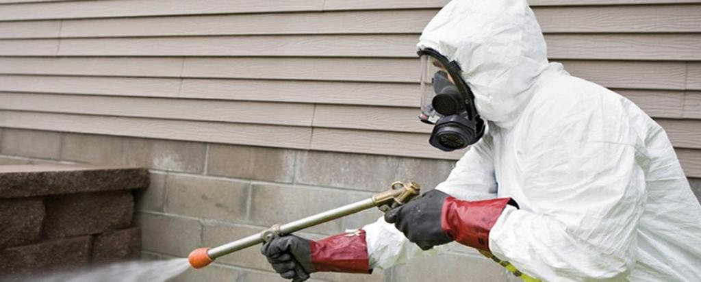 Household Pest Control Starts with Maintenance