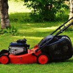 How to Mow the Lawn? Tips for Garden Maintenance